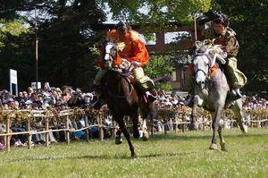 DSC00314競馬.jpg
